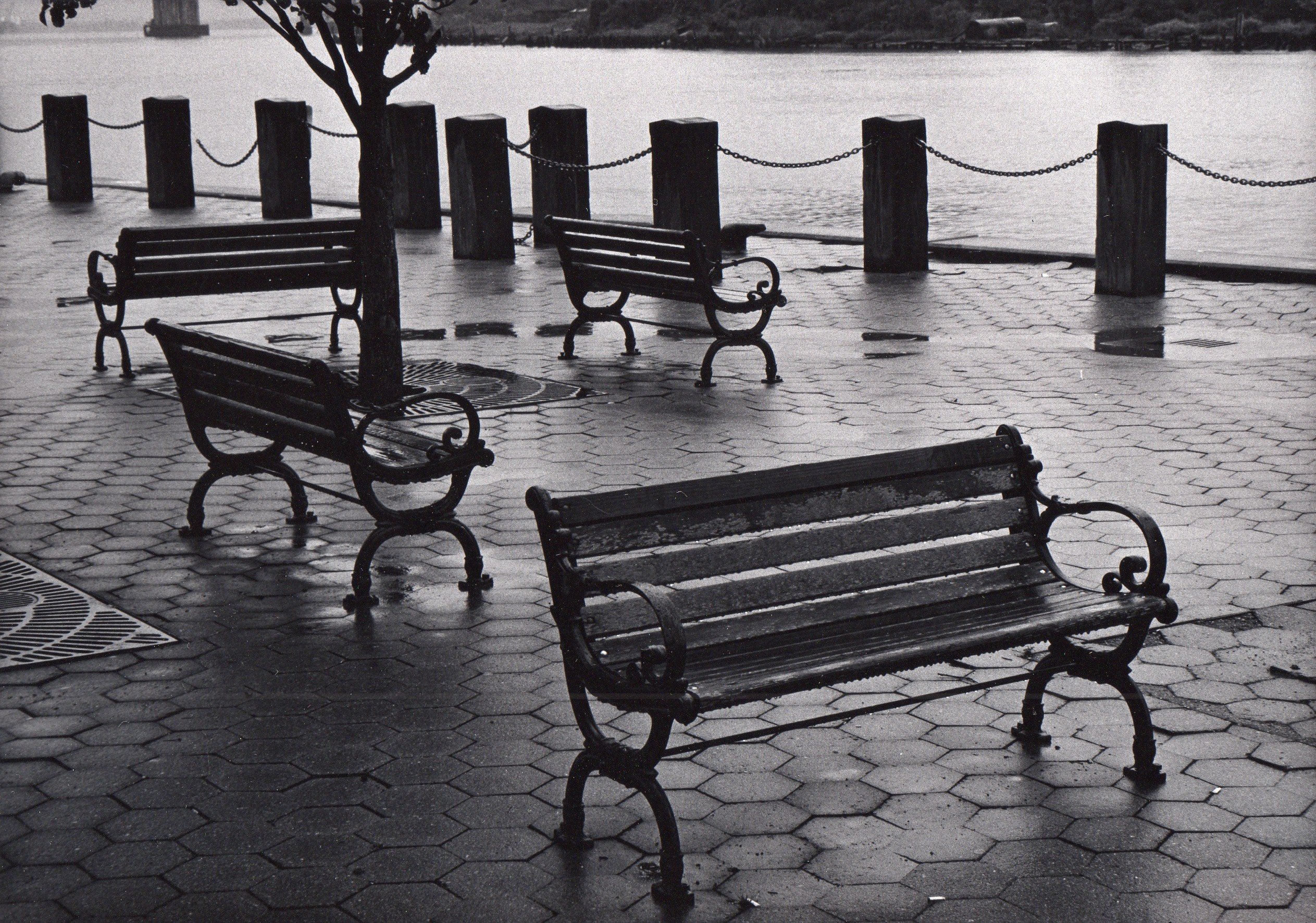 Wilmington, NC. Benches